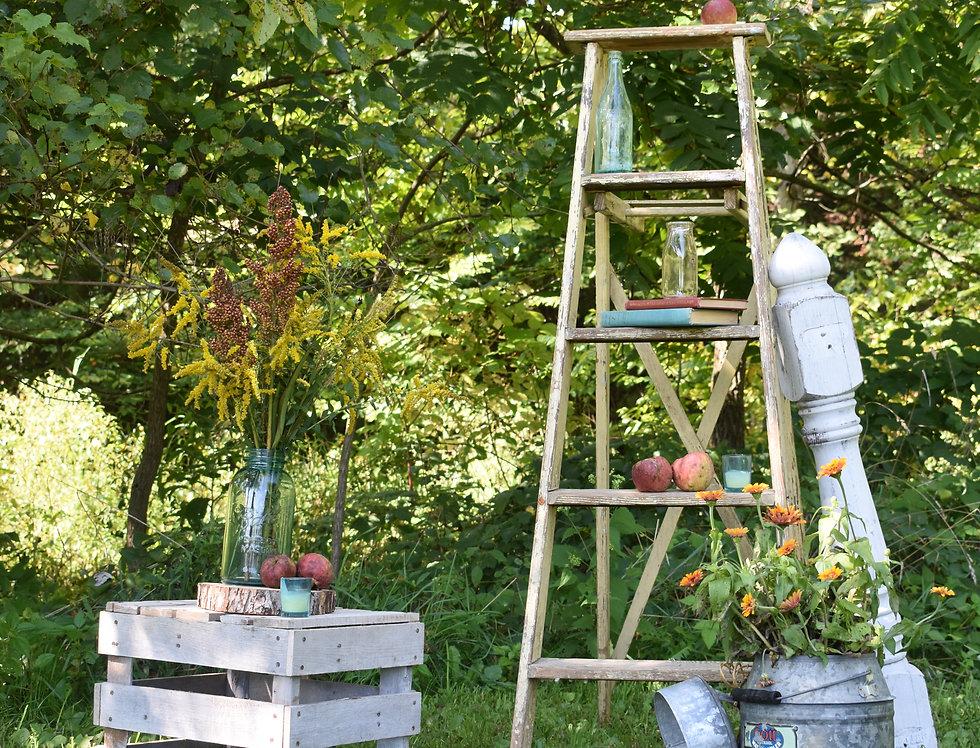 Cream Ladder