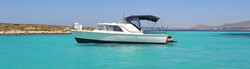 Private Boat Trips from Paros