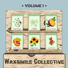 Wax Collective vol. 1