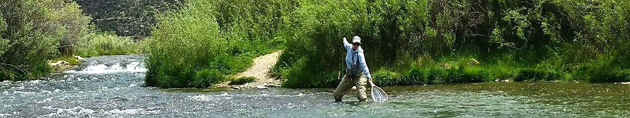 San Juan River Catch and Release