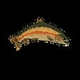 Abe's Fly Shop San Juan River, NM logo
