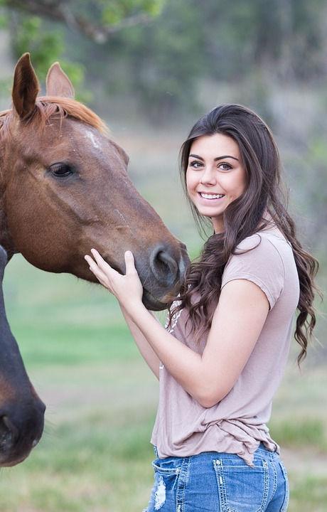horses-1996285_960_720.jpg