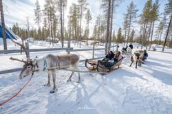 ทัวร์ฟินแลนด์ by Mitty Motto