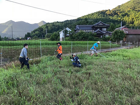 下関農作業1.jpg