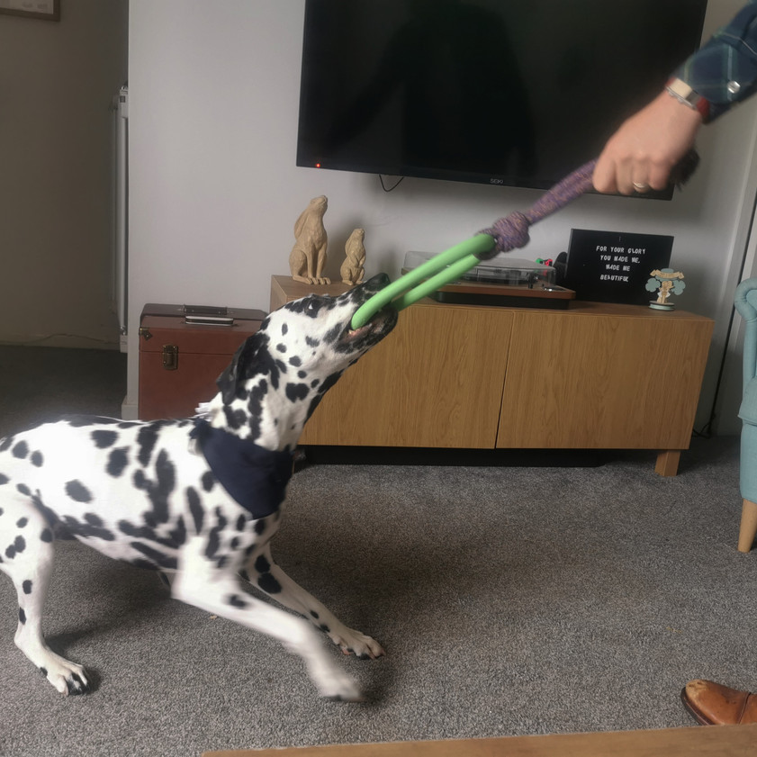 Playing with the hoop on rope