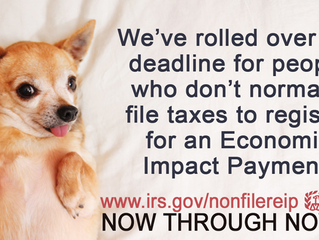 THE IRS EXTENDED THE ECONOMIC IMPACT DEADLINE TO NOV. 21 FOR NON-FILERS. PLEASE CLICK THE LINK BELOW