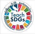 teachsdgs.jpeg