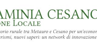 GAL Flaminia Cesano - Azioni formative per operatori economici e PMI locali. - PSR Marche 2014-2020
