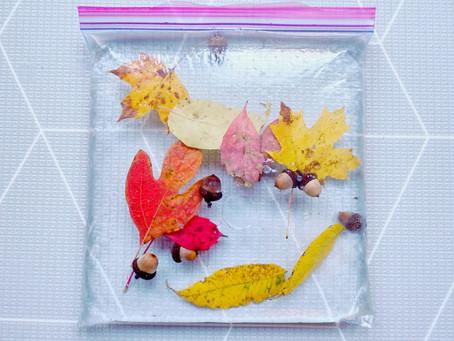 Autumn play blog