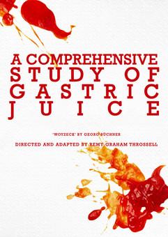 """A Comprehensive Study of Gastric Juice."" 2018. VCA Director's Season (Print)"