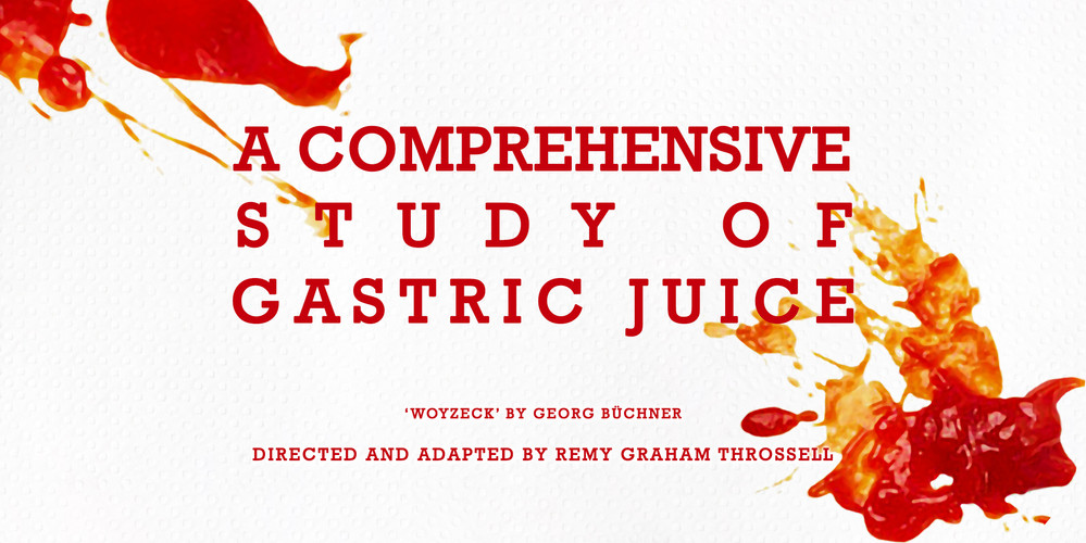 """A Comprehensive Study of Gastric Juice."" 2018. VCA Director's Season (web)"