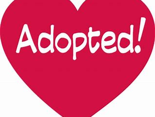 Adoptees can request ADH files starting Aug. 1