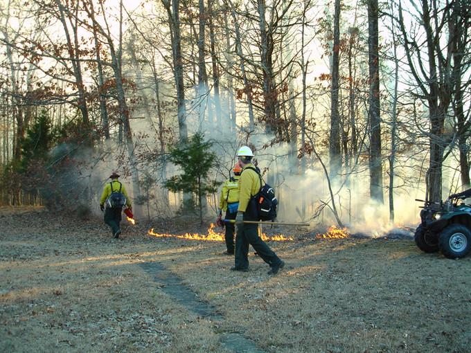 Shiloh Battlefield to Conduct Prescribed Burns