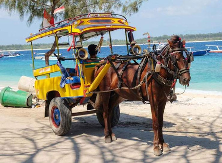 MY EXPERIENCE TRAVELLING TO GILI ISLANDS SOLO - MELTDOWNS, MALARIA & MONEY.