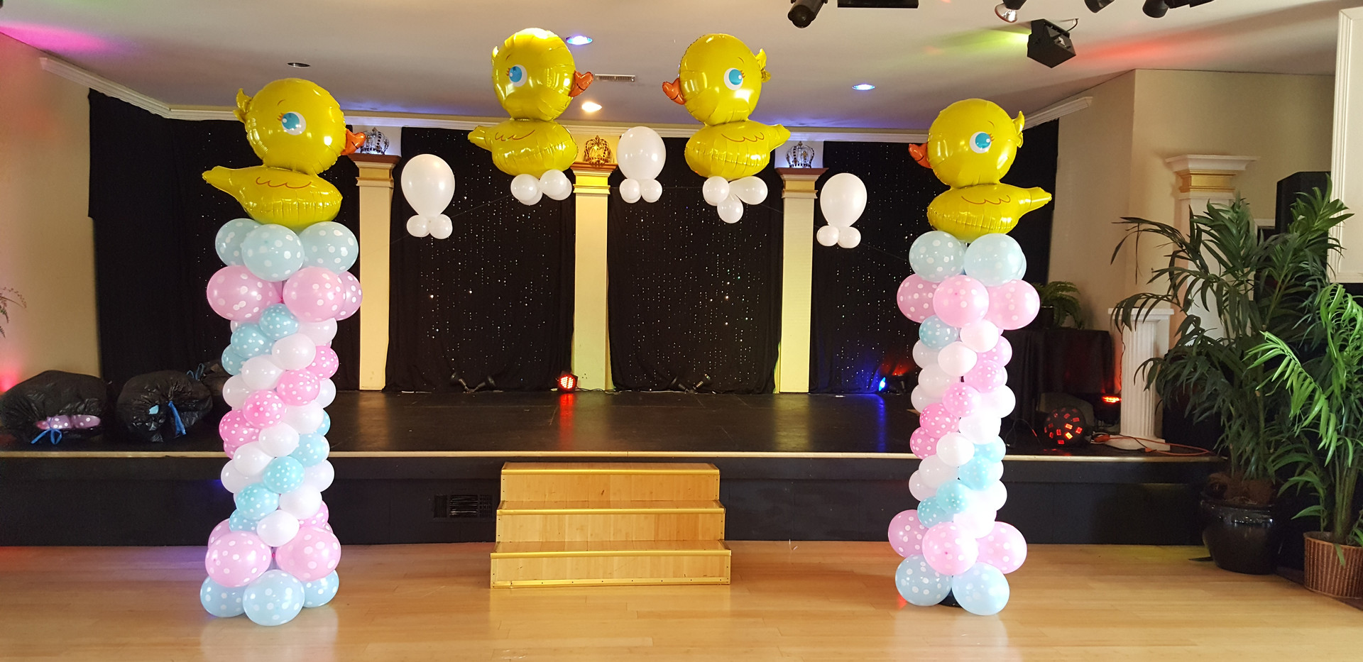 Balloon Arch Gender Reveal
