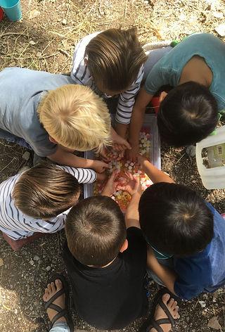 alpine school district fall break 2020