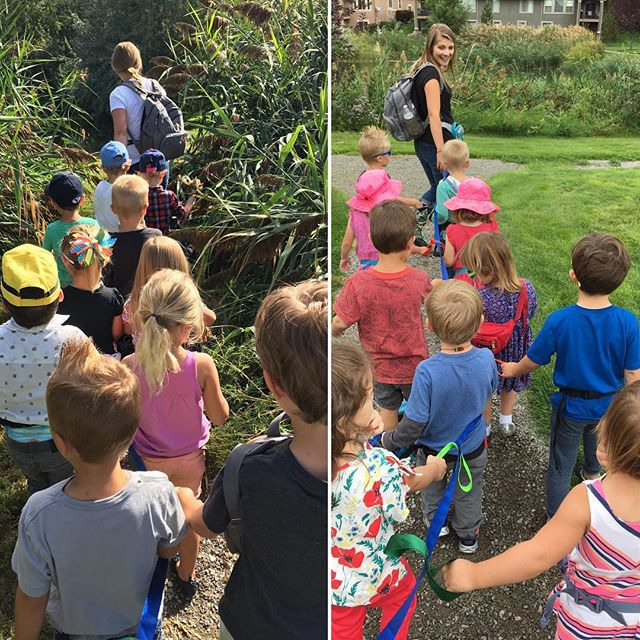 On Wednesday & Thursday we went on a nature walk to find baby plants & learned more about seeds and