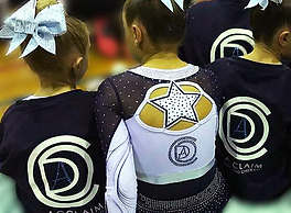 Cheerleading uniform and logo back view