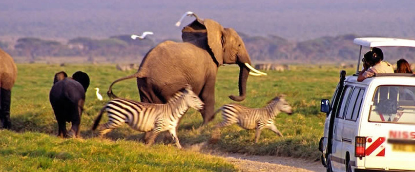 3-days-kenya-lodge-safari-amboseli.jpg