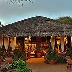 kibo-safari-camp22.jpg