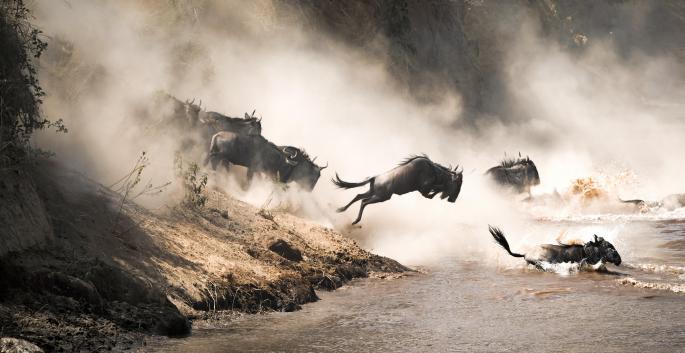 5 Days , The Great Migration Safari.jpg