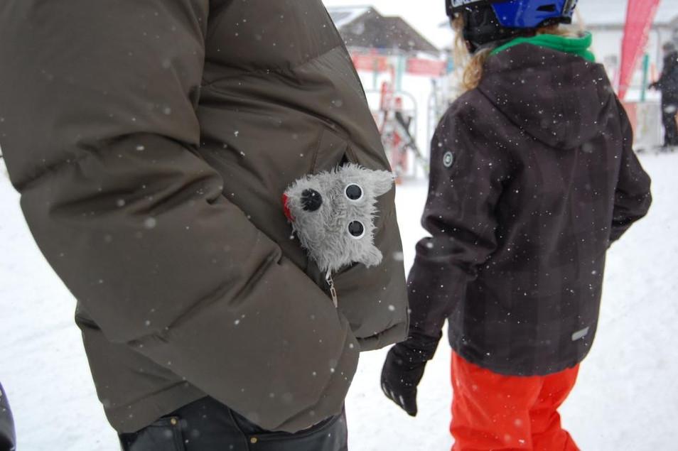 Dem Strolchi war ein wenig kalt..JPG