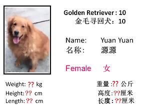 10 - Yuan Yuan.png