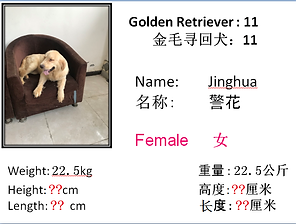11 - Jinghua.png