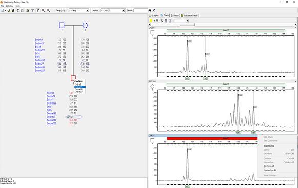 GeneMarker DNAフラグメント解析
