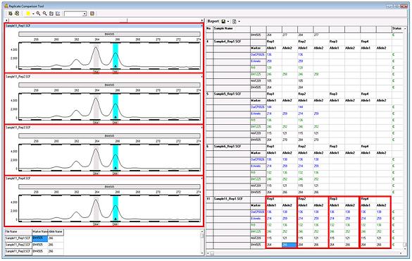 GeneMarker フラグメント解析
