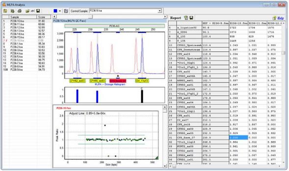 フラグメント解析 GeneMarker