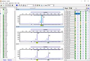 GeneMarker, フラグメント解析