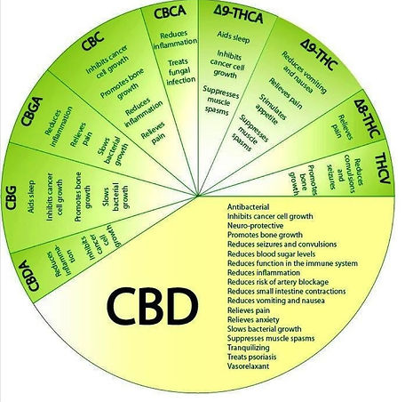 cannabinoid-wheel.jpg