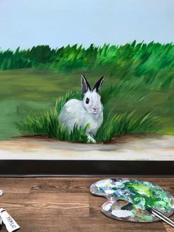 Monica's Bunny at Goddard.jpg