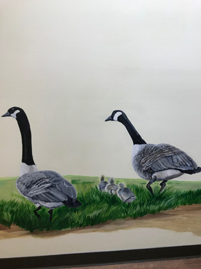 Family of Geese.jpg