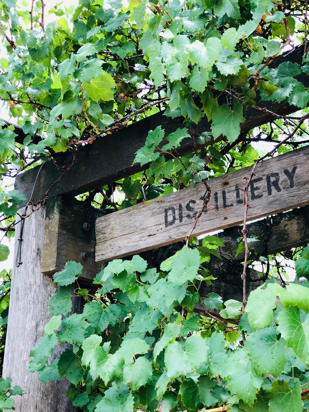 Distillery door - what happens when you buy Australian craft spirits?