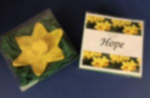 Ceramic daffodil in presentation box