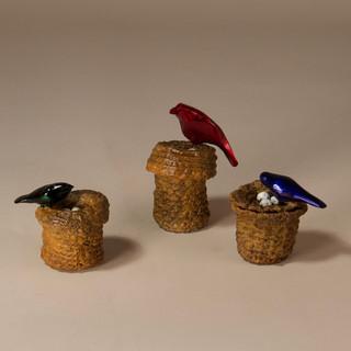 Three Nesting Birds