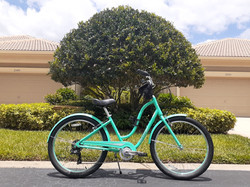 Beautiful bike repaired by Emobilize