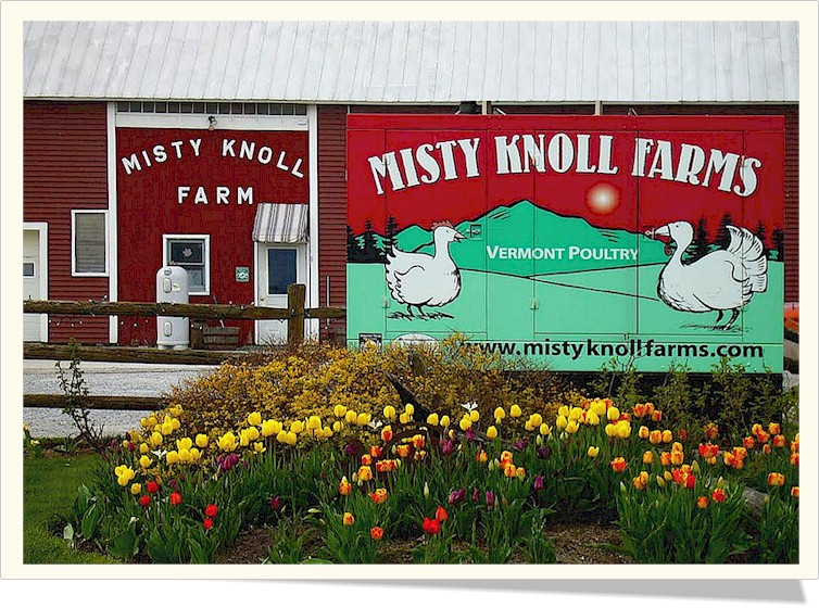 Misty Knoll Farm