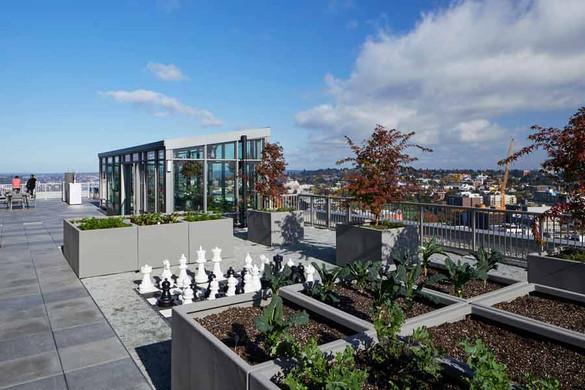 Danforth, rooftop deck