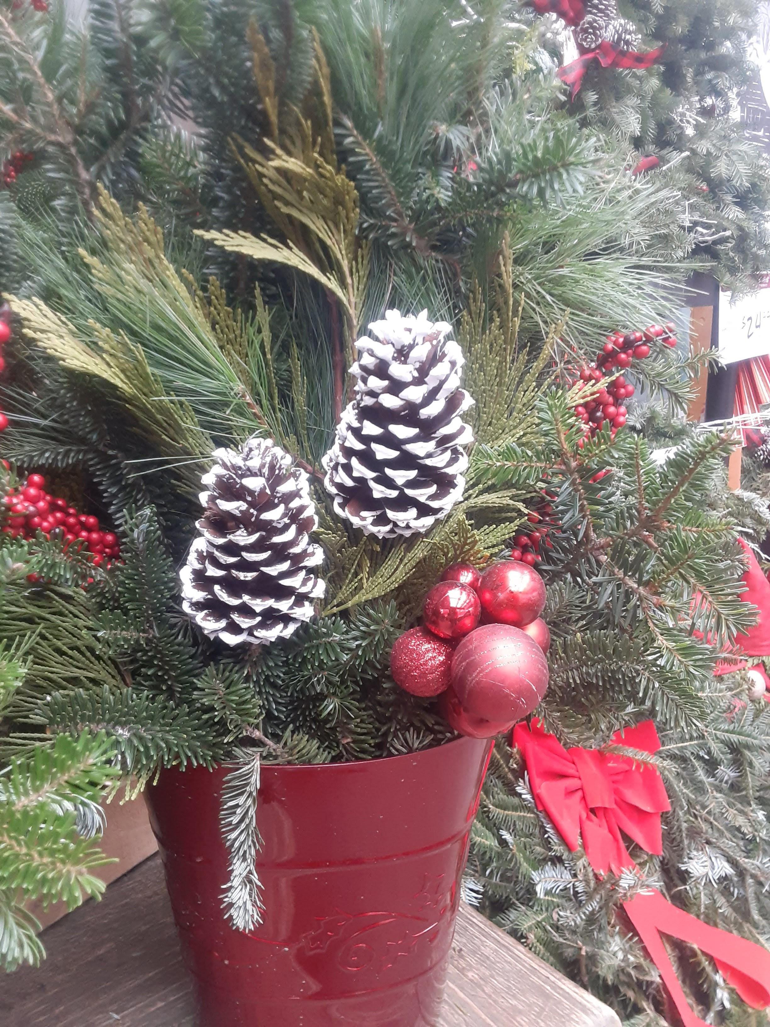 Festive Fowl Holiday with Soulful Santa