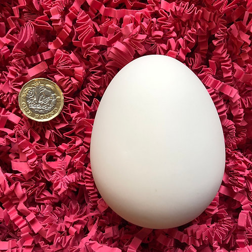 Paint your own ceramic duck egg