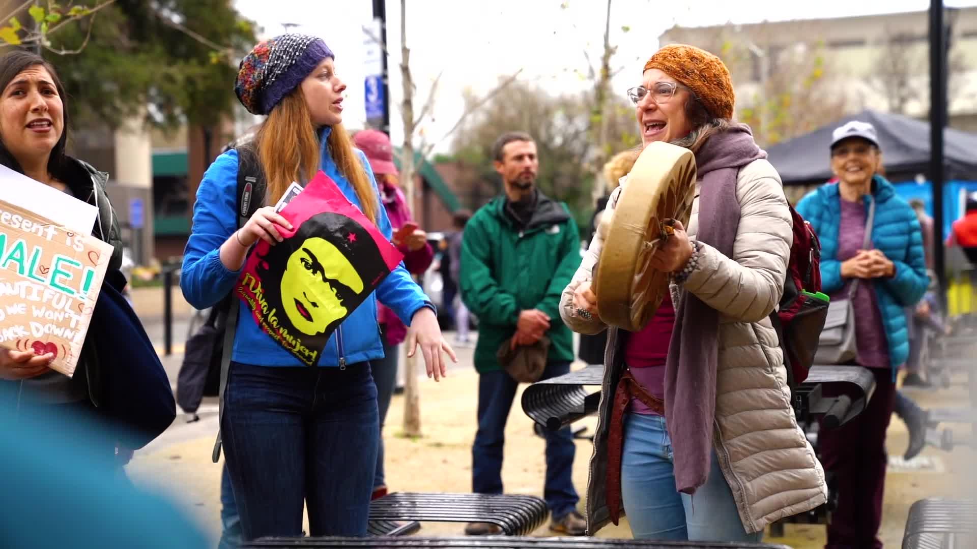 Women's March: Santa Rosa 2019
