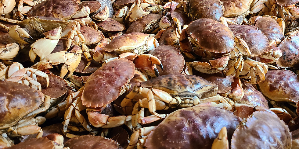 LIVE JONAH CRAB! Wild Caught - Fresh Off the Boat! -  Schenectady Greenmarket, NY