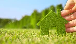 Consigli per una vita più green