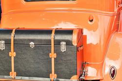 trunk-1316993