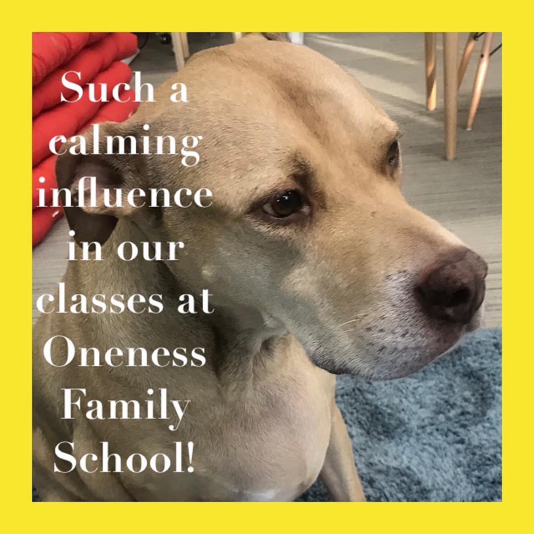 Oneness School