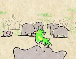 TED Education, Elephant Intelligence