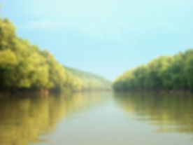 Kentucky River 06.jpg